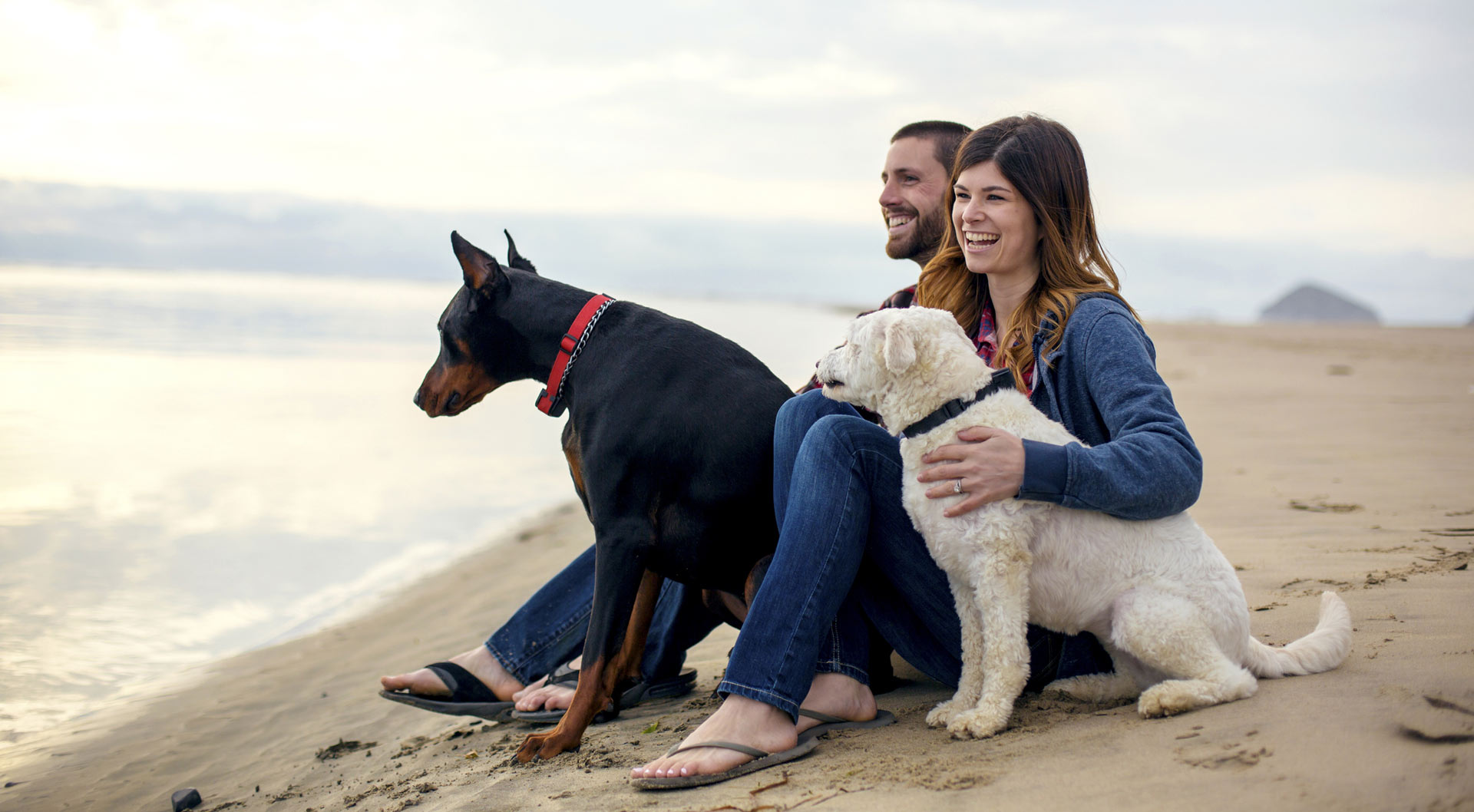 Suites black rock oceanfront resort ucluelet for Pet friendly hotel vancouver